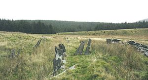 300px-Slate_fencing_marking_field_boundaries_at_Glan-y-Gors_-_geograph.org.uk_-_596945