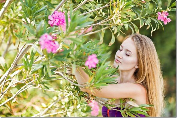 herbs-spring-energy[1]