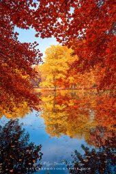 www-naturephotographie-com-reflet-dautomne-1